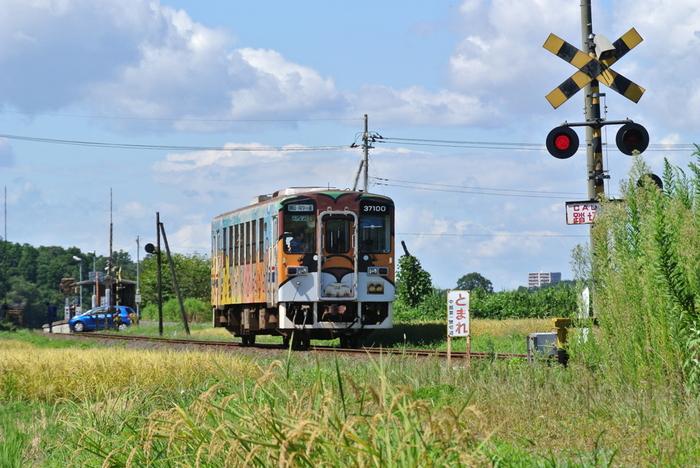 中根駅を訪れたら、ぜひ下車して周囲を散策されることをおすすめします。中根駅周辺はのどかな里山風景が広がっています。日本の原風景を思わせる景色の中で、わずか1両だけの小さな列車が走り過ぎてゆく様は、郷愁がただよっており、とても絵になります。