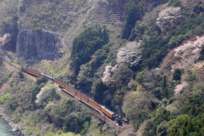 切り立った断崖絶壁のすぐ近くに位置する神尾駅は、人里離れた僻地にあり、まさに私たちが想い描く「秘境駅」そのものです。