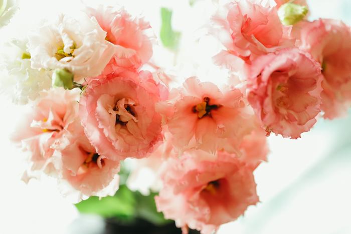 に の 冬 に あなた た 生き 花 咲く よう こがらし輪音「冬に咲く花のように生きたあなた」|まるき