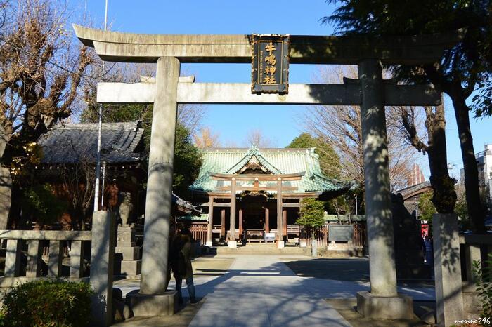 隅田公園のすぐそばにある「牛嶋神社」は、860年創建の歴史ある神社。にぎやかな東京ミズマチとは対照的に、厳かな雰囲気です。