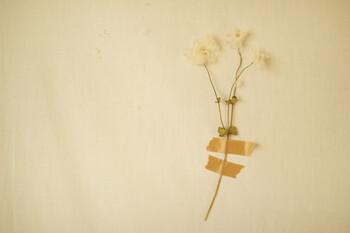 自然のお花やドライフラワー、造花などのお花を子供の写真や作品と一緒に飾るのも素敵なアイデアです。マスキングテープを使えば壁に跡が残らず、模様替えも気軽にできます。