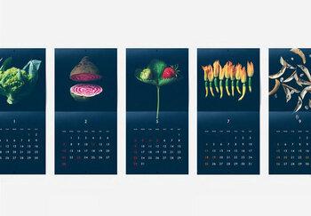 お部屋のアクセントになりそうな写真がメインのカレンダーです。 写真の題材は、普段何気なく目にしている野菜たち。こんなにもフォルムや色が美しかったなんて…新しい発見がありそうですね。