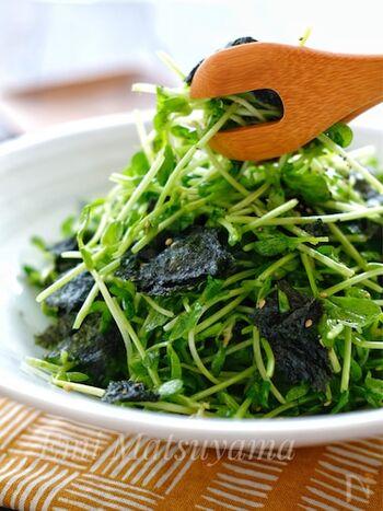 豆苗はキッチンバサミでざくざくと、海苔は手でちぎって包丁いらず。パパっと5分以内でできあがる、簡単やみつきサラダです。