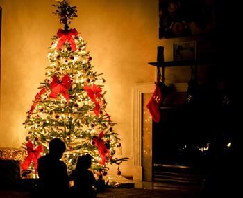 そうして迎える12月25日・26日は、ドイツで「クリスマス第1日」「クリスマス第2日」として指定されている祝日。街中の多くのお店が閉まり、人通りもほとんどなくなります。その代わり、人々は一つ屋根の下家族や親せきとともに集まって、穏やかなひとときを過ごすのが一般的。きらびやかに飾ったクリスマスツリーをながめながら、プレゼントを開け、美味しい食事やお菓子を楽しみます。日本では恋人と過ごす日というイメージが定着していますが、ドイツではキリスト教の重要な日であるだけでなく、1年の最後に家族と静かな時間を楽しむ特別な日なんですね。