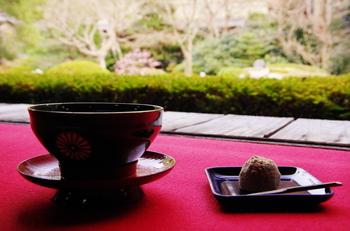 また、追加料金を支払うことで抹茶とお菓子をいただくこともできます。梅や桜を眺めながら、ゆっくりとした時の流れを感じられるはず。