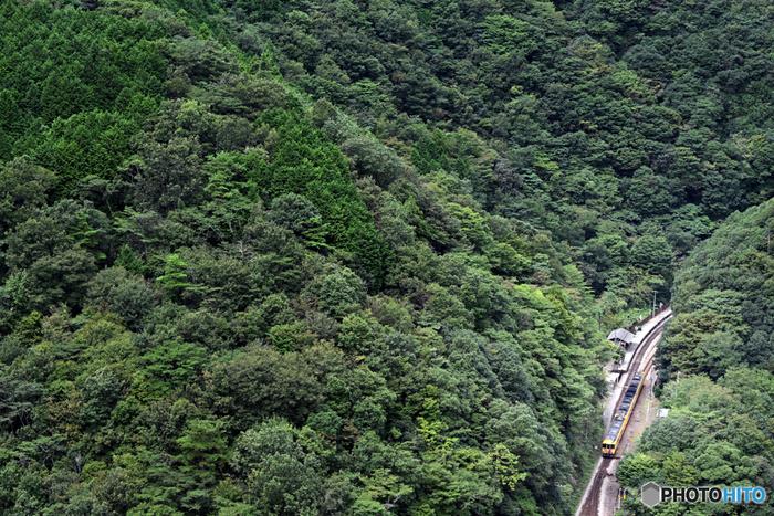 秘境駅は、日本全国各地に点在しています。断崖絶壁に佇んでいたり、湖の上にぽつんと位置していたり、周囲に民家が全く無い野原の中であったり、様々な場所に秘境駅が存在します。