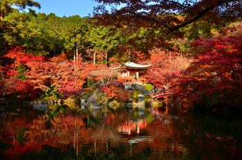 「醍醐寺」も紅葉の名所として知られ、土日は境内に入るまでに長い行列に並ぶことになります。しかし、夜間は特別拝観の予約をすることで、通常よりも15分早く境内に入ることができます。