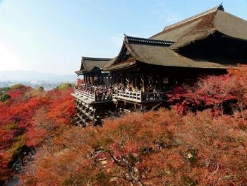 一年を通して人気が高い観光地・京都。誰もが知っているような有名寺院は、見応えはあっても人が多過ぎて京都らしい風情あまり感じられない…なんてことも。  今回は、京都観光を心静かに楽しむことができる穴場スポットをご紹介!季節ごとに分けているので、ぜひ旅行の計画の参考にしてくださいね。