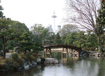 ちょうど橋の真ん中に京都タワーが見えるのも、駅近の庭園ならでは。冬に咲く椿も数種類植えられています。