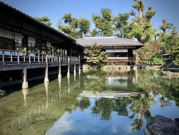 敷地は広大で、他にも池のすぐそばに立つ「臨池亭」や茶室の「縮遠亭」など「渉成園十三景」と呼ばれるほど見所があります。新幹線の時間まで1時間ほど余ってしまった、という場合に立ち寄ってみてはいかがでしょうか。