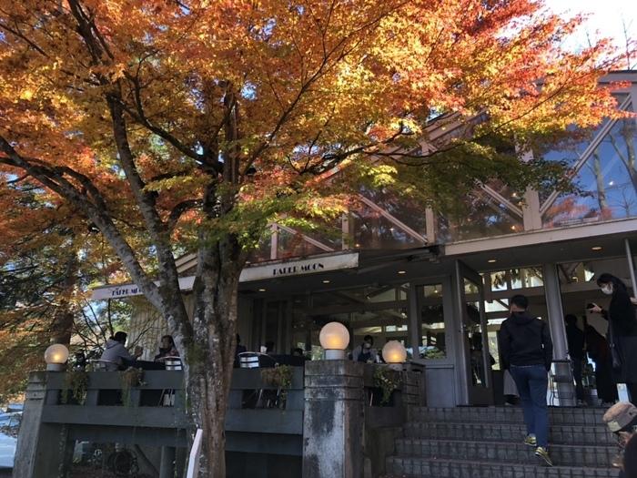 """""""大人にとって心地良い時間と空間""""がコンセプトの「Paper moon(ペーパームーン)」は、2,600坪もある森に囲まれた山中湖畔にあります。広い敷地には季節の草花が咲いていたり自然の樹木が生い茂っていて、別荘のような雰囲気。"""