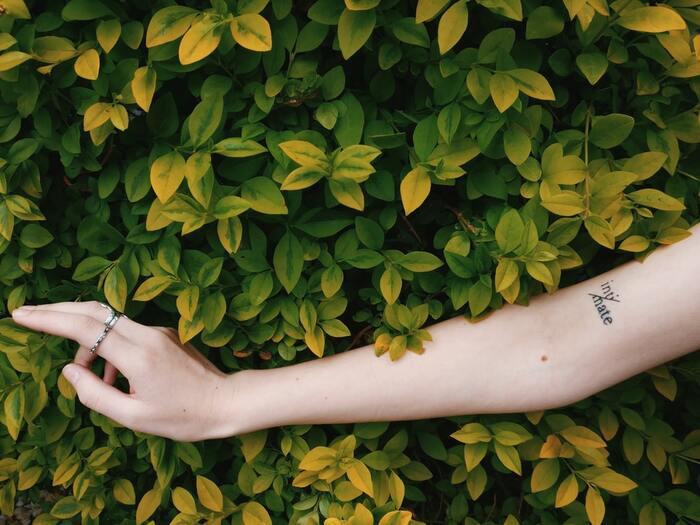 カイロで最も多いトラブルは低温火傷です。防ぐために、以下の点を意識して使用してください。  ・熱いと感じたらすぐに外す ・肌に直接貼らない ・就寝時は付けない  敏感肌の方は、カイロ専用カバーや腹巻を併用するのもおすすめです。