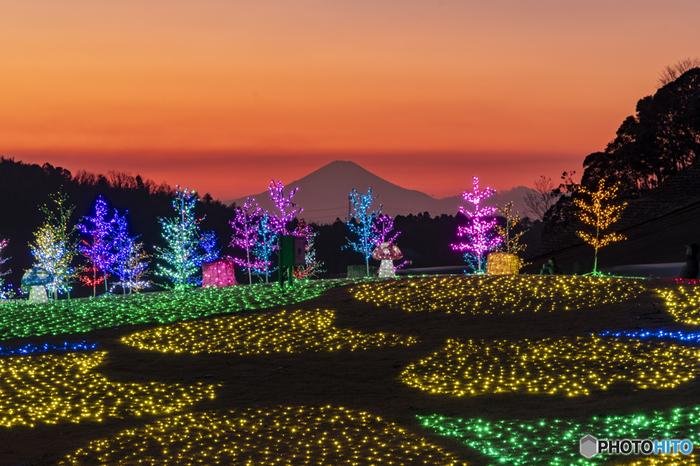 袖ヶ浦市にある自然豊かなテーマパーク「東京ドイツ村」は、県内屈指のイルミネーションスポットとしても有名な場所です。広大な敷地を活かしたイルミネーションは圧巻。夕暮れ時には富士山のシルエットも見え、唯一無二の絶景が生まれます。