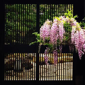 無機質な印象のエントランスも、生命力溢れるお花を添えればご覧の通り。一気に明るく華やかになります。お客様をもてなす気持ちが伝わってきますね。