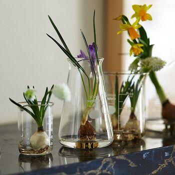 背の高いお花を飾るのにも最適。安定しているので、誤ってひっくり返さずに済みそうですね。