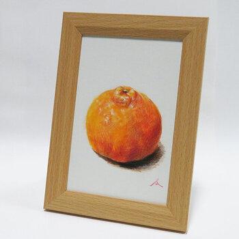リアルに描かれたポンカンがなんとも美味しそうな1枚。果物の凹凸の質感とテカリが本物のように再現され、思わず触れてみたくなりますね。
