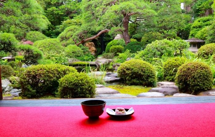 美しい庭園を眺めながらのお茶は、まさに究極の癒し。大正浪漫を感じる素敵な場所です。見どころ満載の柴又で、観光気分を味わってみてはいかがでしょうか。