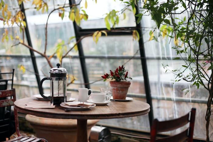 """喫茶店の楽しみ方は人それぞれです。お喋りをしたり、本を読んだり……そんな空気を味わいに行くのも、目的のひとつになり得ますよね。お店ごとに違う""""心地よく過ごしてもらう工夫""""が、また奥深いのです。こだわりはさまざまなところにあります。珈琲やサンドウィッチなど、ひとつのメニューに注目して、巡りながら比べてみるのも面白いですよ♪"""