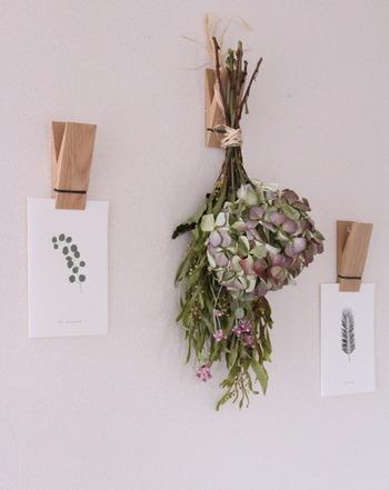 植物や自然が描かれたポストカードとスワッグは相性がいいですね。木製のピンチがさらにナチュラル感をアップし、世界観をまとめてくれています。