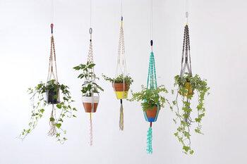 様々な種類の糸を使用しカラフルに仕上げたプラントハンガーはいかがですか?麻ひもやコットンなど種類は5タイプで、どれもグリーンが映える目を引くデザインです。プラントハンガーでグリーンをさらに楽しみましょう!