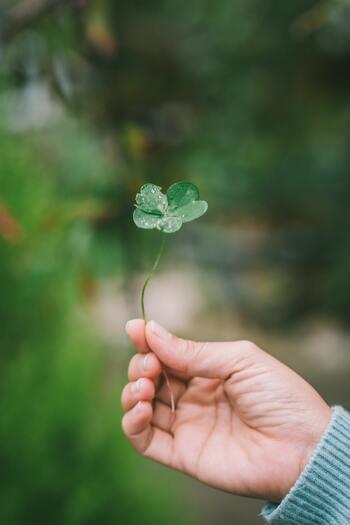 「運がいい人」って、どんな人?日常に『小さな幸運』を起こすための「5つのコツ」