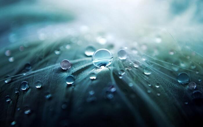 気温差が激しい冬の体調管理や乾燥防止に大切なのは「湿度管理」です。空気中の湿度が40%以下になると、静電気も発生しやすくなるため60~65%の湿度を保ちましょう。加湿器を置いたり、濡らしたタオルや水を入れたコップをテーブルの上や枕元に置くのも◎