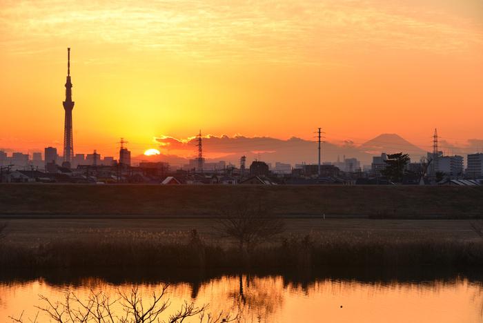 対岸の松戸から柴又を望むと、スカイツリーも見えます。小説「野菊の墓」や、歌謡曲「矢切の渡し」でも注目を集めたこちら。ゆっくりと江戸川を渡る舟に、思わず昔の風景を想像するひと時です。