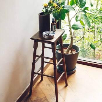 植物のディスプレイ用などで重宝する、背の高いテーブル。アンティーク品で探そうとするとなかなか見つからないものですが…、フェリシモの「アンティークな佇まい 背の高いミニハイテーブル」を頼ってみてはいかがでしょう。  玄関先・キッチンでの、ちょっとした荷物置きにしたり…。大きくなくてもいいけど、置き場が欲しい!というスペースに、きれいにはまります。