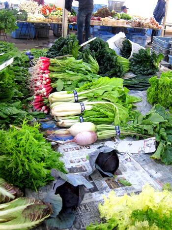 """市場に並ぶのは、""""鎌倉野菜""""で愛称されている、鎌倉近郊で露地栽培された旬の野菜や果物、花卉類です。 【瑞々しい葉物野菜が並ぶ11月下旬のレンバイ】"""