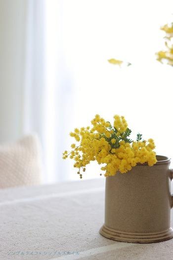 お花の色が鮮やかな分、少しでも十分にお部屋を明るくしてくれるのもミモザの魅力。大きな花瓶に入れるためにカットしたお花などは、小さな花瓶に生けて、食卓やキッチンなどよく目につく場所に置いて楽しみましょう。