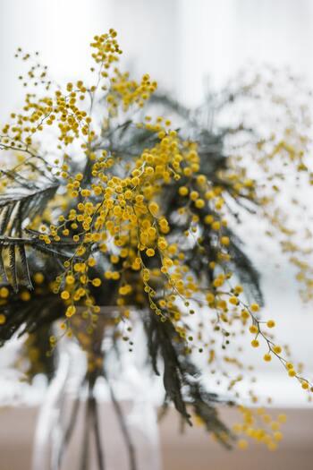 まずは生けたい花瓶を決めたら、お水に浸かる部分よりも少し上までの下葉を取り除き、細い脇枝は手でポキポキと折っていきます。もちろん取り除いた小さな脇枝もお花が咲いていれば、小さな花瓶に生けてOK。お手持ちの花瓶に枝が大きすぎる時には、半分にカットして同じ様にお水に浸かる部分の葉と枝を取り除いて生けることが出来ます。