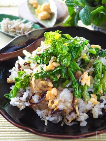 ナンプラーはお醤油に近い調味料なので、和の食材とも良く合います◎これからの季節に試したいのは、菜の花とじゃこを使った、春を感じられるレシピ。旬の食材もナンプラーで味付けを変えれば、一層楽しめます。