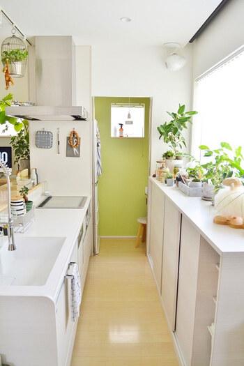 キッチンはあまりスペースがないので、模様替えが難しいかもしれませんが、配置を変えるだけでもぐんと雰囲気が変わります。こちらのブロガーさんのキッチンは、グリーンがたくさんあってさわやか。このままでもステキですが、配置を変えると……