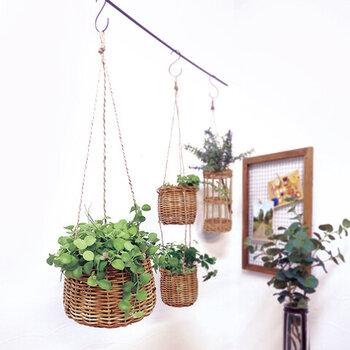 グリーンも、直接置いたり天井から吊るしたりといった「飾り方」や、入れる鉢などによってお部屋に与える印象が大きく変わってきます。こちらのようにバスケットに入っているようなグリーンはよりナチュラルな印象が強くなりますね。自分のお部屋に合わせてデザインを選んでみましょう。