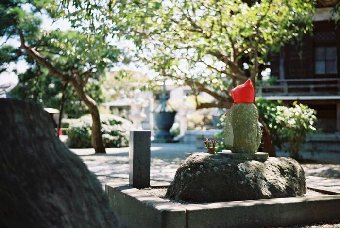 """観光客で混雑する駅周辺や海岸、商店街や若宮大路界隈を除けば、鎌倉の町中は、ゆったりとして落ち着いた趣で、例え観光シーズンであっても、早朝や夕方過ぎは、何処も概ねのどやかで、鎌倉らしいローカルな雰囲気です。  【若宮大路の「鎌倉市農協連即売所」の東側にある「本覚寺」周辺は、大路の喧騒が嘘のように静やかで穏やかな雰囲気。画像は「本覚寺」境内の隅に佇む「しあわせ地蔵」。地元では、""""見守り地蔵さん""""として大事にされている。】"""