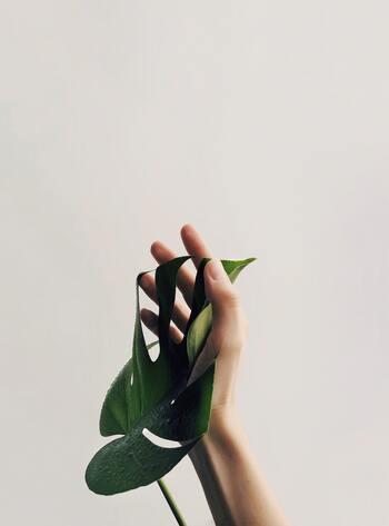 """そんなときは意識的にリフレッシュすることが大切。""""re=再び""""、""""fresh=新鮮""""、この言葉の通り、私たちは疲れた心を再び新鮮な状態に戻すことで、心と身体の健康を守ることができるのです。"""