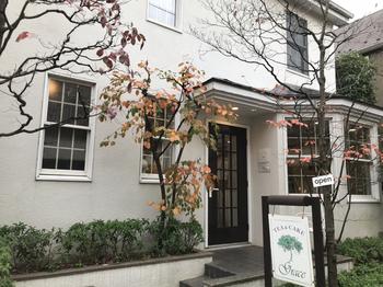 1984年から続く「Tea&Cake Grace (ティーアンドケーキ グレース)」は、まるでリゾート地にいるような緑豊かなカフェ。大通りから少し離れた路地裏にある落ち着いたお店です。