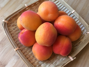 使い道いっぱい「アプリコットジャム」お菓子・デザート・料理のアレンジレシピ