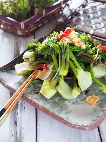 タラの芽を、にんにくと赤唐辛子、オリーブオイルを使ってペペロンチーノにすると、ガーリックの風味に負けない山菜の濃い味が引き立ちます。