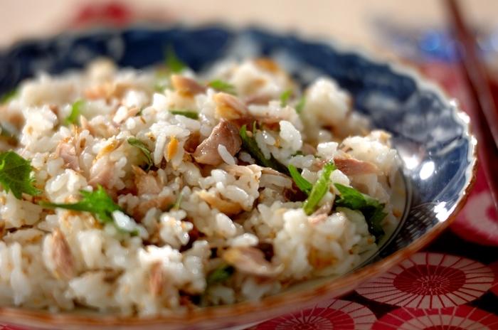 ほぐした焼きサバを加えた、どこかホッとする味の混ぜ寿司。食欲のない日もさっぱりと食べられるシンプルな味わいです。