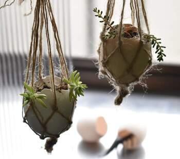 転がりやすい形状なので、麻紐で吊るしてみても素敵。お部屋の雰囲気がぐんと高まりますね。