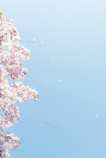 読めばきっとあたたかい空気に包まれる。「春に読みたくなる小説」10選