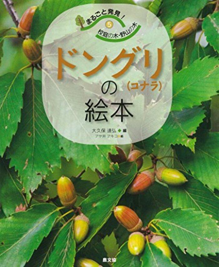 ドングリ(コナラ)の絵本 (まるごと発見!校庭の木・野山の木)