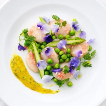 ホタテやグリーンアスパラガスに紫色のエディブルフラワーをアクセントにしたカルパッチョ。フランボワーズのビネガーソースとアイオリソースの2種類で本格的な味わいに。特別な日にふさわしい花畑のようなひと皿です。