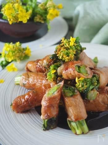 菜の花はおひたしが定番ですが、豚肉で菜の花をくるくると巻いてメインおかずに。豚肉のジューシーさと菜の花のほろ苦さに、甘辛だれがマッチします。