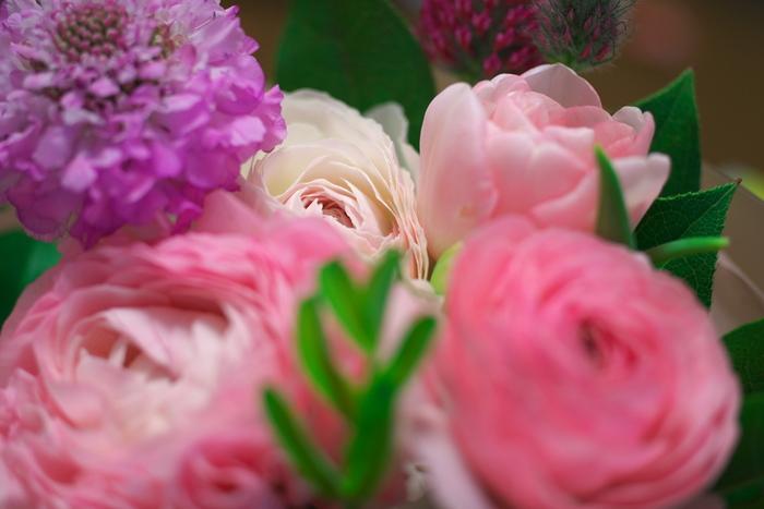 綺麗なお花は出来るだけ長く美しくと思ってしまいますが、生花をオイルの中に入れるとカビが生えたり腐ってしまうので、残念ながらハーバリウムには使うことが出来ません。少しでも長く綺麗なハーバリウムを楽しむためには、良く乾燥したドライフラワーを使うのも一つの大切なポイントとなるようです。