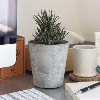 アマブロのプランターは、植物への水やりコントロール機能付き。鉢植えでありながら、地植えに近い状態を保てます。底穴は開いていますが、塞いで鉢カバーとしての使用も可能。植木鉢として使うなら、同素材・同カラーのソーサーと組み合わるのがおすすめです。