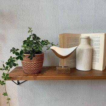 トライバル風のデザインがインテリアのアクセントとなる鉢カバーです。生産をプロデュースしているのは、老舗の植木鉢メーカー。高いデザイン性と本格的なクオリティでお部屋を彩ってくれるでしょう。