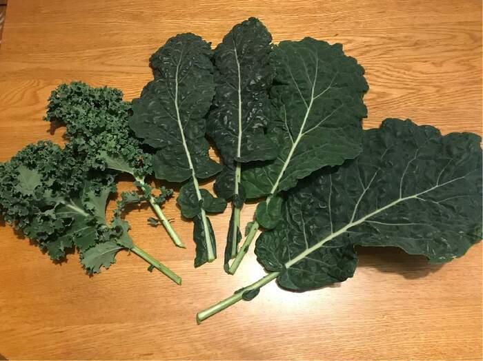 注目野菜【ケール】人気レシピ24選!栄養を摂れる食べ方はスープ/サラダがおすすめ*