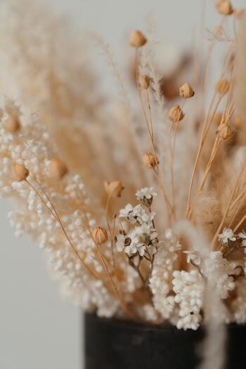 ドライフラワーは生花より長持ちするといっても、楽しめる期間が限られています。長く飾っていると色があせたり、ホコリがついたり…中にはカビが生えてしまうことも。お花の種類や飾り方にもよりますが、早ければ3か月ほど、長くても半年~1年間くらいで寿命になります。